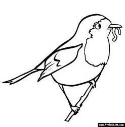 what color is a robin robin coloring page free robin coloring