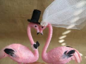 pink love birds related keywords amp suggestions pink love