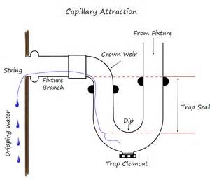 all about plumbing traps