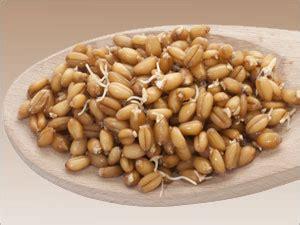 vit b6 alimenti vitamine b6 pharmacien giphar