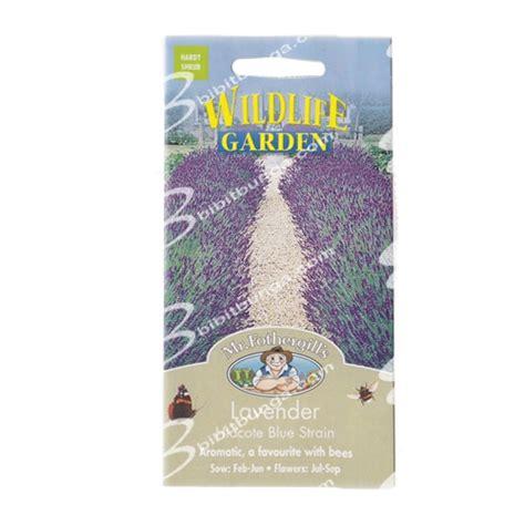 Benih Bunga Mr Fothergills Import Cornflower Blue benih lavender hidcote blue 100 biji mr fothergills