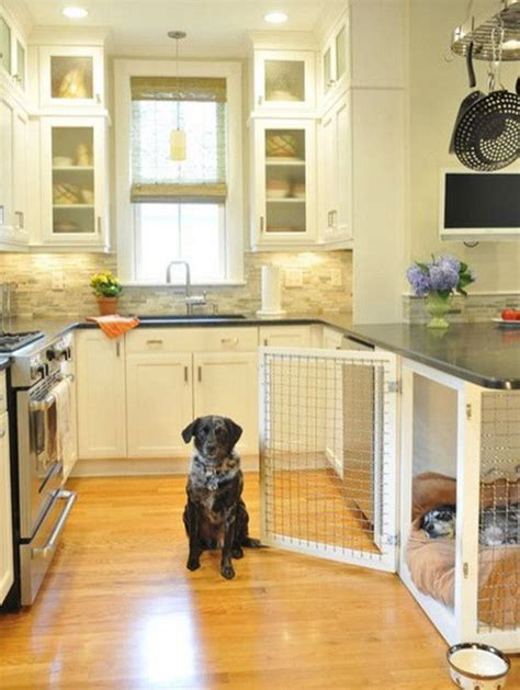 bed with built in dog bed 1000 ideas about dog spaces on pinterest dog rooms dog