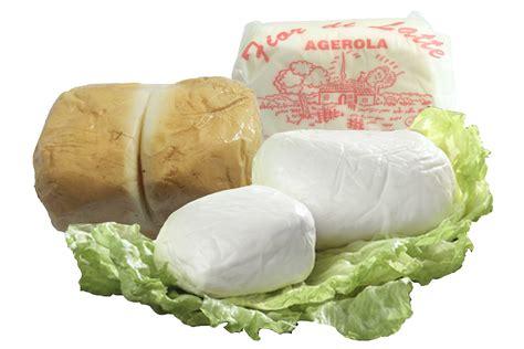 fior de latte fior di latte di agerola 500 g totemfood s r l