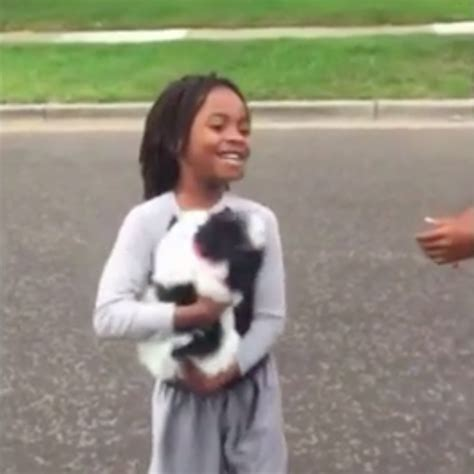 Stelan Boy 29 puppy stolen from boy s arms is finally reunited with family the animal rescue site