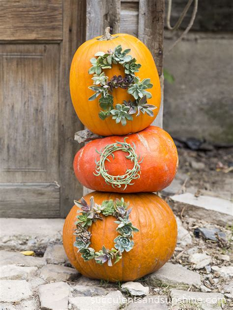 pinterest picks  carve pumpkin ideas