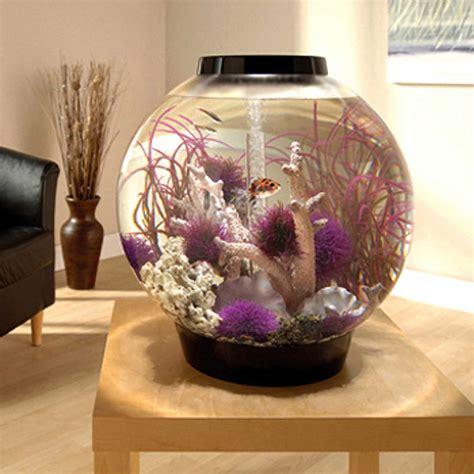 biorb black mega aquarium kit  light petco