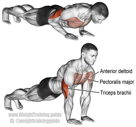 grip push up exercise and