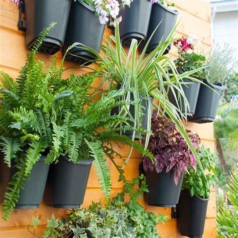 shop  dig living wall modular vertical garden kit