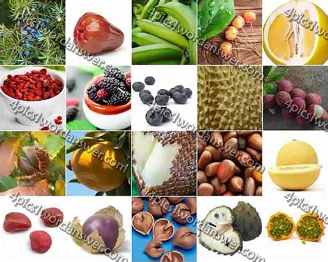 fruit 100 pics 100 pics fruit and nut level 61 80 answers 4 pics 1