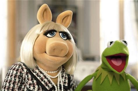 Kermit And Miss Piggy Meme - miss piggy and kermit memes