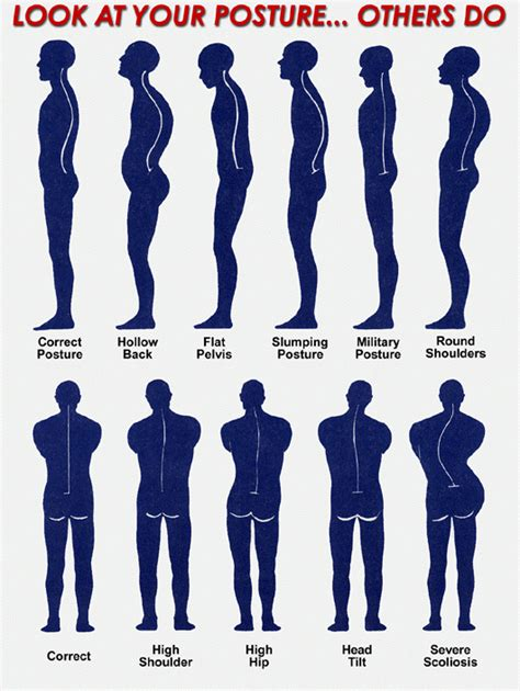 exercises for posture the stand program for better health through posture books posture for a healthy back what is posture