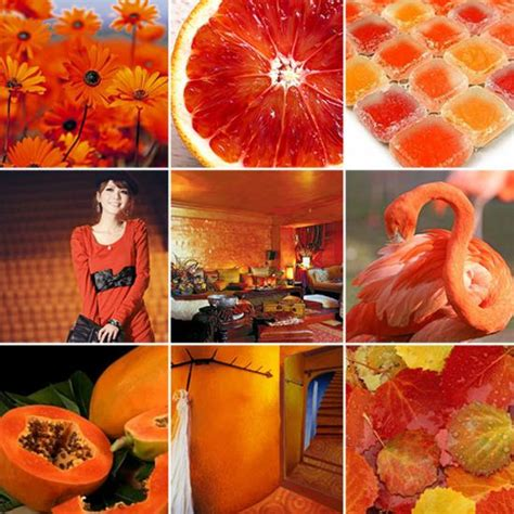 orange color theme 33 orange color schemes inspiring ideas for modern