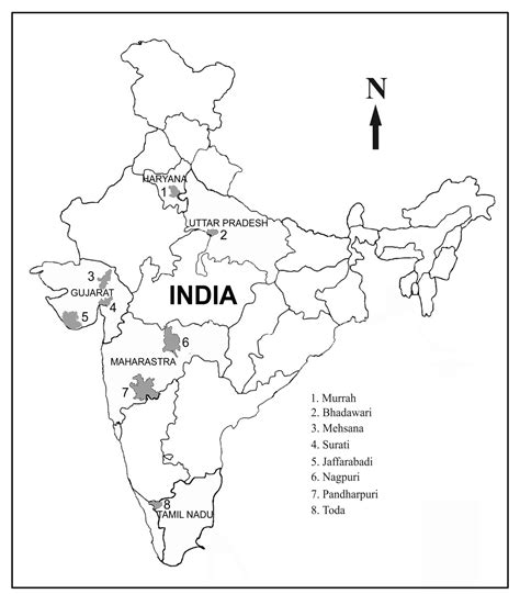 An Outline Political Map Of India by India Map Political Outline