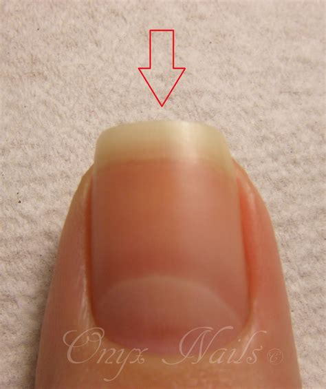 The Nail by Onyx Nails Nail Lingo