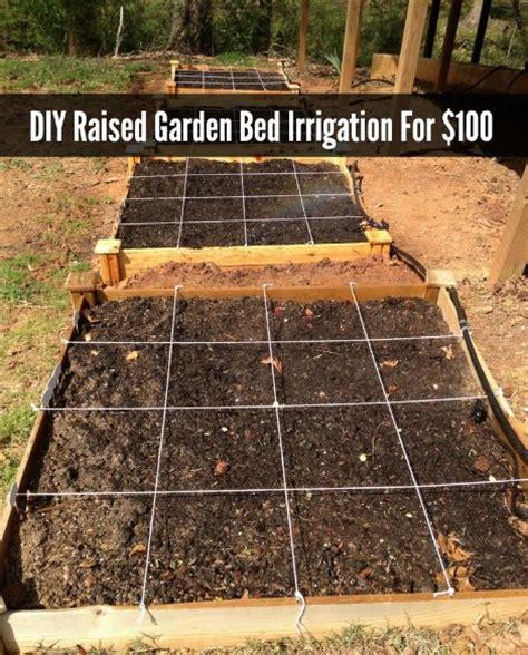 raised bed irrigation diy raised garden bed irrigation for 100