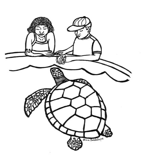 Sea Turtles Coloring Pages Sea Turtle Coloring Pages Az Coloring Pages by Sea Turtles Coloring Pages