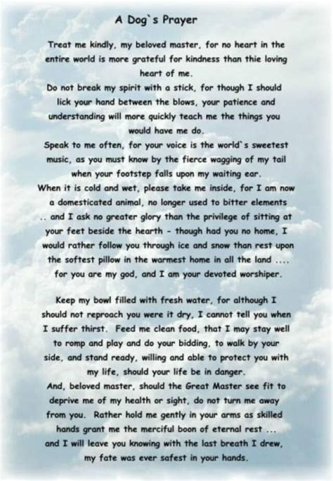 dogs prayer a s prayer makes me want to cry this hangs in the vet s office i cry every