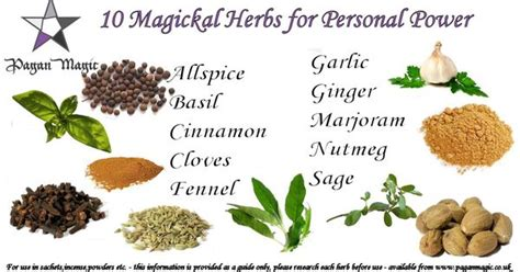 Kitchen Magic Herbs 10 Magickal Herbs For Personal Power Green Witchcraft