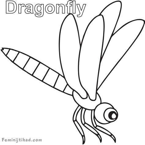 dragonfly coloring page free dragonfly coloring pages printable coloring pages