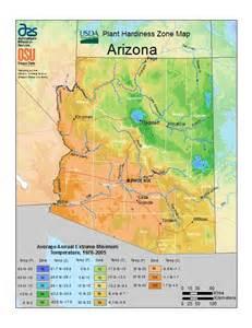17 best ideas about arizona gardening on