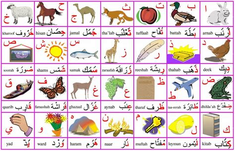 arabo lettere arabic alphabet animal poster free arabic courses