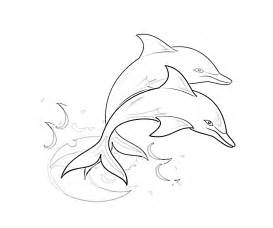 coloring pages of dolphins dolphin coloring pages 6 coloring