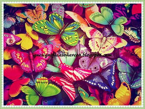 fotos muy bonitas y originales que significa so 209 ar con mariposas significado de los