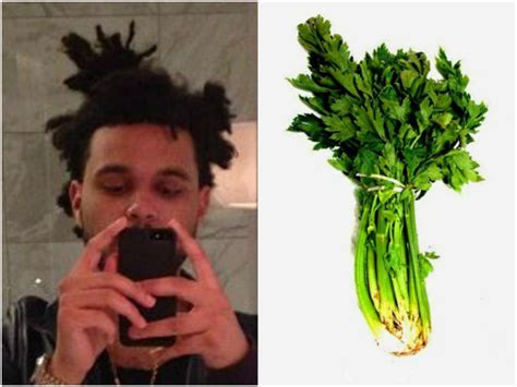 whats up with the weeknds hair 13 foods that look like the weeknd s hair