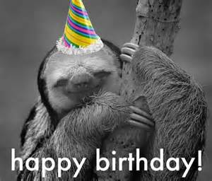 birthday sloth photo by s16016wb photobucket