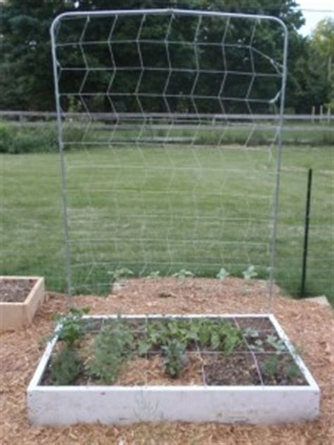 10 Foot Garden Trellis Using Vertical Space With A Square Foot Garden Trellis