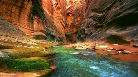 Nature HD Wallpapers   Android Apps on Google Play