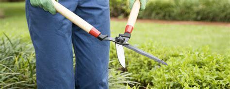 stipendio giardiniere le 5 idee per arrotondare lo stipendio deabyday tv
