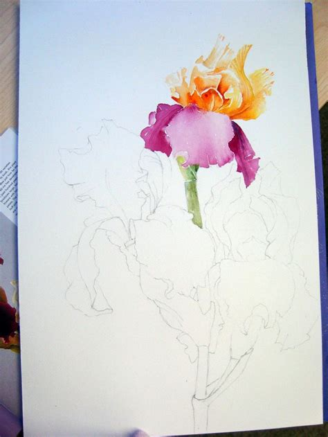 tutorial watercolor flowers 17 best images about watercolor flowers on pinterest