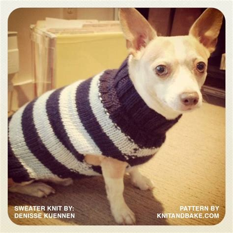 knitting pattern dog coat easy knitting knit and bake knitting pinterest nice