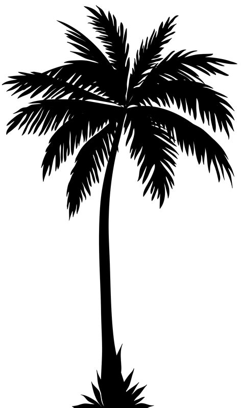 palm tree silhouette png clip art image tattoos