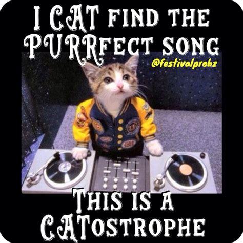 Raver Meme - cat kitty dj edm rave puns memes memes