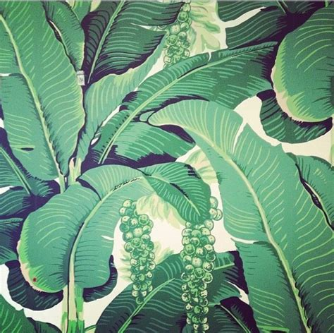 banana leaf wallpaper beverly hills hotel pin by kerry fee on design pinterest