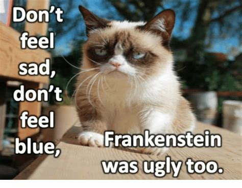 Feeling Sad Meme - don t feel sad don t feel blue frankenstein was ugly too