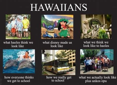 Hawaii Meme - 808state tumblr