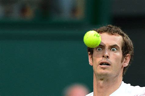 Andy Murray Meme - andy murray looking intense funny