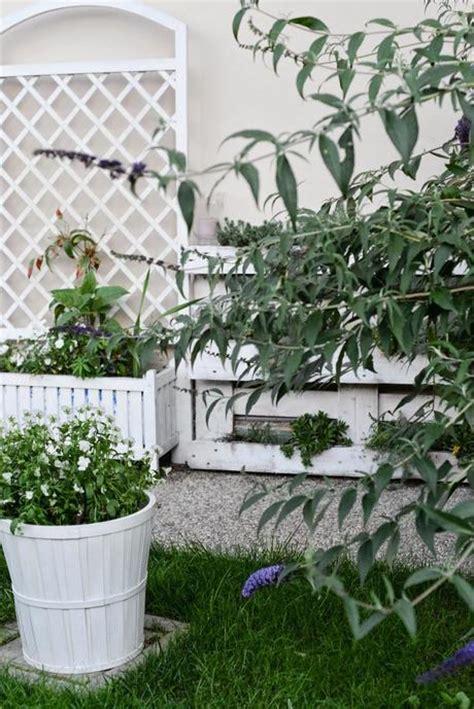 piante da giardino con fiori profumati giardino romantico piante e fiori profumati paperblog