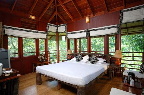 tree house bedroom tree house bedroom bedroom style pinterest