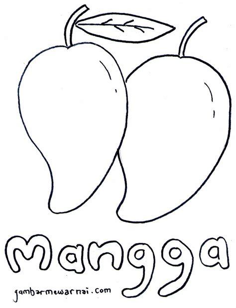 belajar mewarnai buah mangga gambar mewarnai