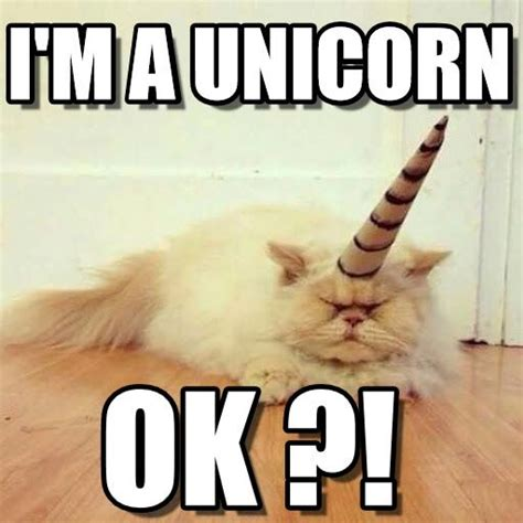 Unicorn Meme - i m a unicorn cat unicorn meme on memegen unicorns