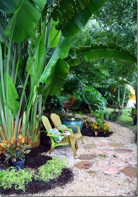 hawaiian backyard tropical garden tropical pinterest