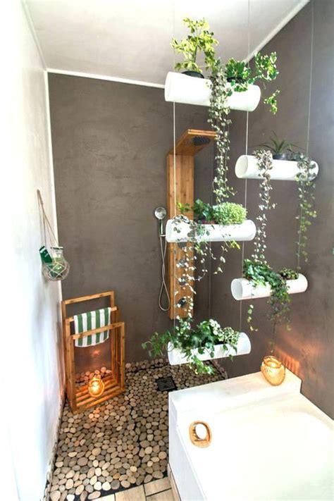 Plante Bambou Dans Salle De Bain by Plante Pour Salle De Bain Sans Lumire Interesting A