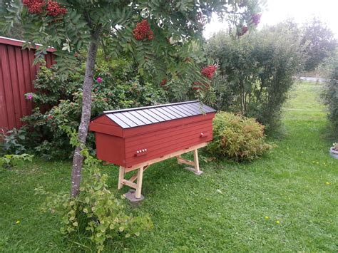tanzanian top bar hive bees bees lewis family farm