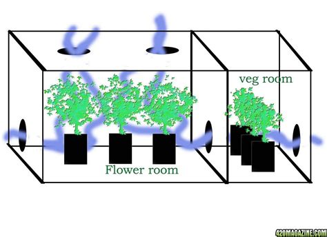 small grow room ventilation heat layout in small led lit grow room advice