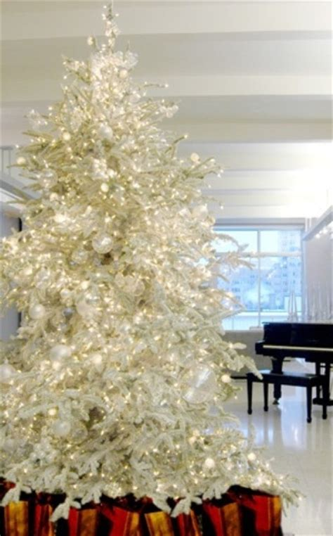 elegant christmas tree pictures photos and images for