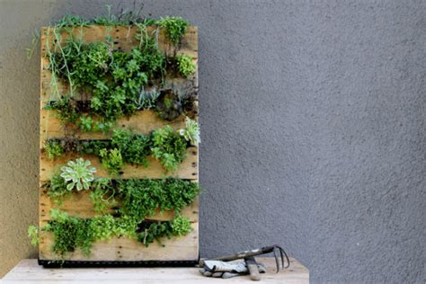 dait interno it hacer jardineras con palets centro de retiros y